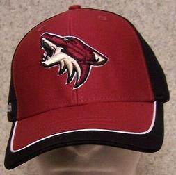Embroidered Baseball Cap Sports NHL Arizona Coyotes NEW 1 si