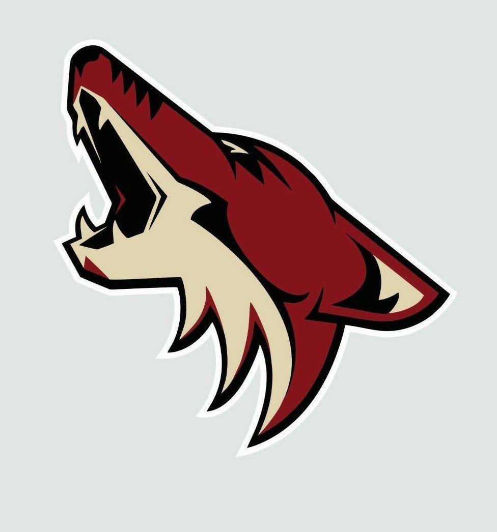 arizona coyotes nhl hockey full color logo