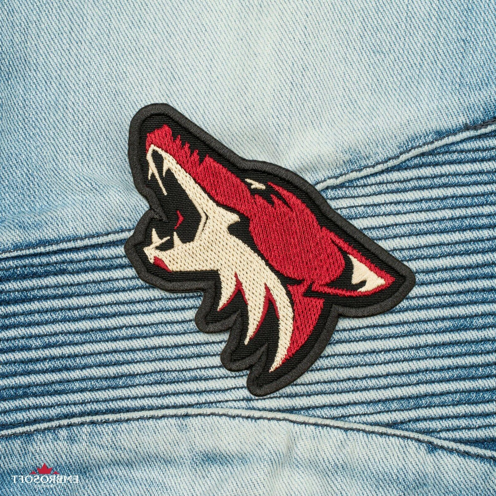🏒Arizona Sports Team Emblem, Embroidered