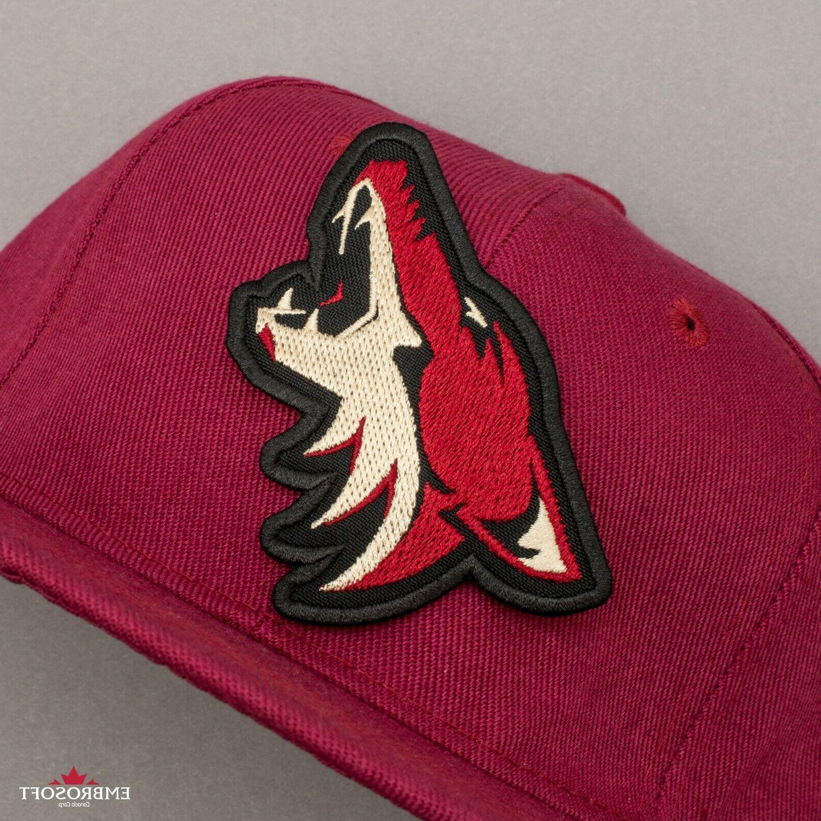 🏒Arizona Coyotes Patch, NHL Sports Hockey