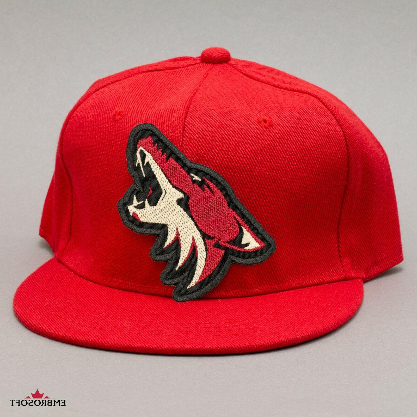 🏒Arizona Coyotes Patch, NHL Sports Team Embroidered Hockey